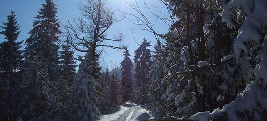 TSB Skihütte